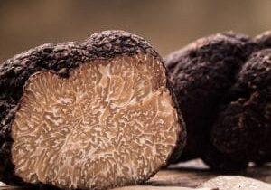 Verse truffel